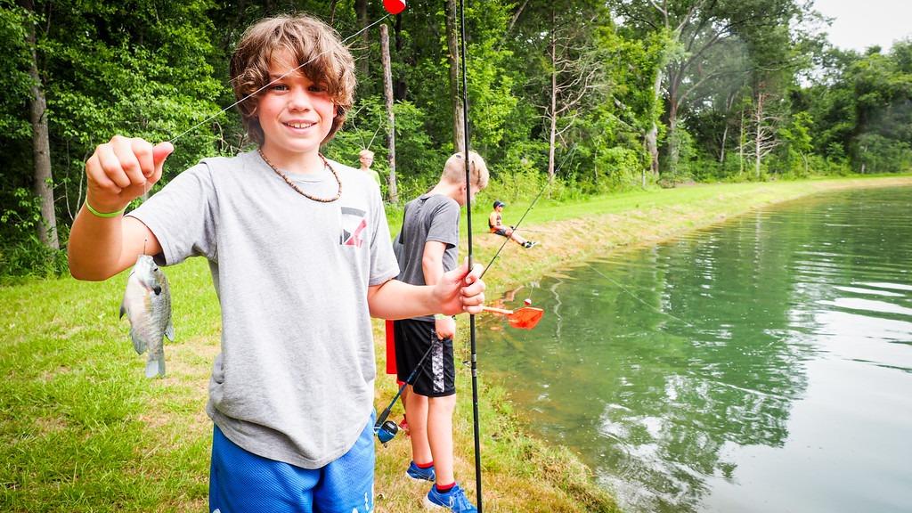 camp canaan optimal fish food